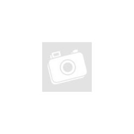 Forgótáras pisztoly X Shot
